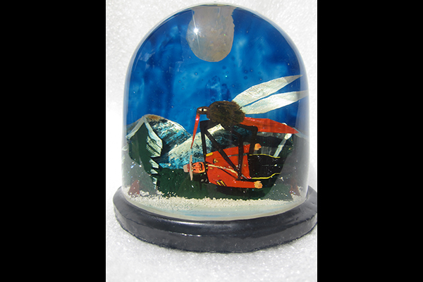 10-portfolio-snow-dome