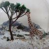 16-portfolio-snow-dome