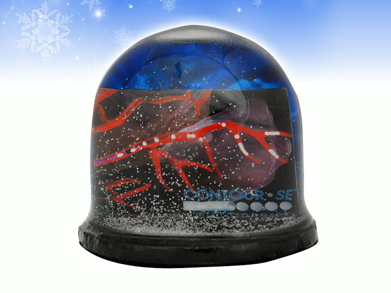 48-portfolio-snow-dome